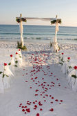 Beach Wedding Path Rose Petals — Zdjęcie stockowe
