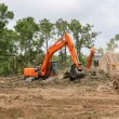 Foto Stock: Backhoes Clearing Land