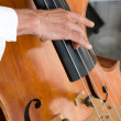 Bass Fiddle Player — Stock Photo