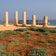 Stock Photo: Columns At CaesareMaritima, Israel