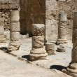 Stock Photo: Columns At Herodion