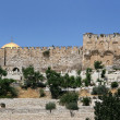 Blocked Eastern Gate, Jerusalem — Stock Photo