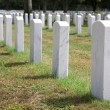Military Headstones — Stock Photo #1413125