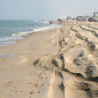 Outer Banks Beach, North carolina — Stockfoto