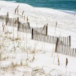 Sand Fences Along Seashore — Photo
