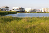 Homes Encroach On Wetlands — Stock Photo