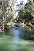 Jordan River, Israel — Stock Photo