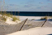 Sand Fence Along The Gulf Coast, Florida — Stock Photo