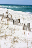 Sand Fences Along Seashore — Stock Photo