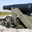 Civil War Cannon — Stock Photo #1439736