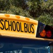 School Bus — Stock Photo #2513041