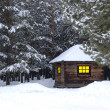 Little house in winter forest — Stockfoto