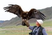 Golden Eagle with spread wings — Stock Photo