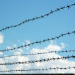 Stock Photo: Sky through barbwire