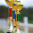 Stock Photo: Three prize cups in perspective