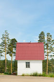 Solitary house between pines — Stock Photo