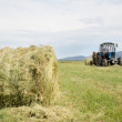 Royalty-Free Stock Photo: Hay harvesting