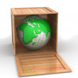 Stock Photo: Earth in crate