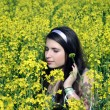 young girl in canola field — Stock Photo