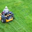 Foto Stock: Male gardener working with lawn mower