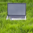 Royalty-Free Stock Photo: Laptop in the grass with gray color