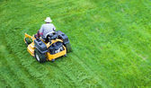 Male gardener working with lawn mower — Stok fotoğraf