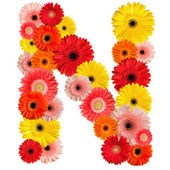Beautiful alphabet of flowers — Stock Photo