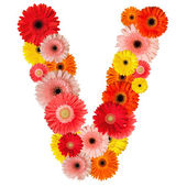 Beautiful alphabet of flowers — Stock Photo