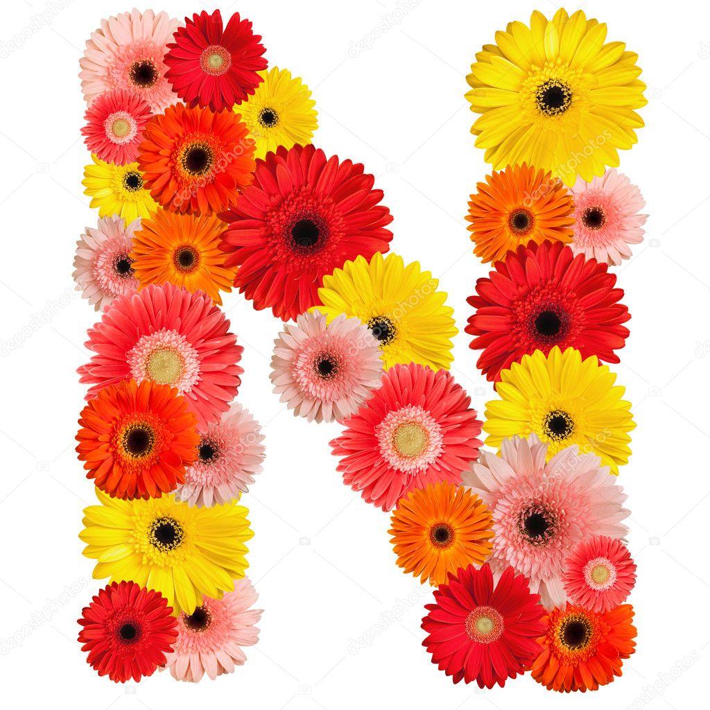 Цветы по алфавиту с