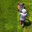 Male gardener working with lawn mower — Stock Photo