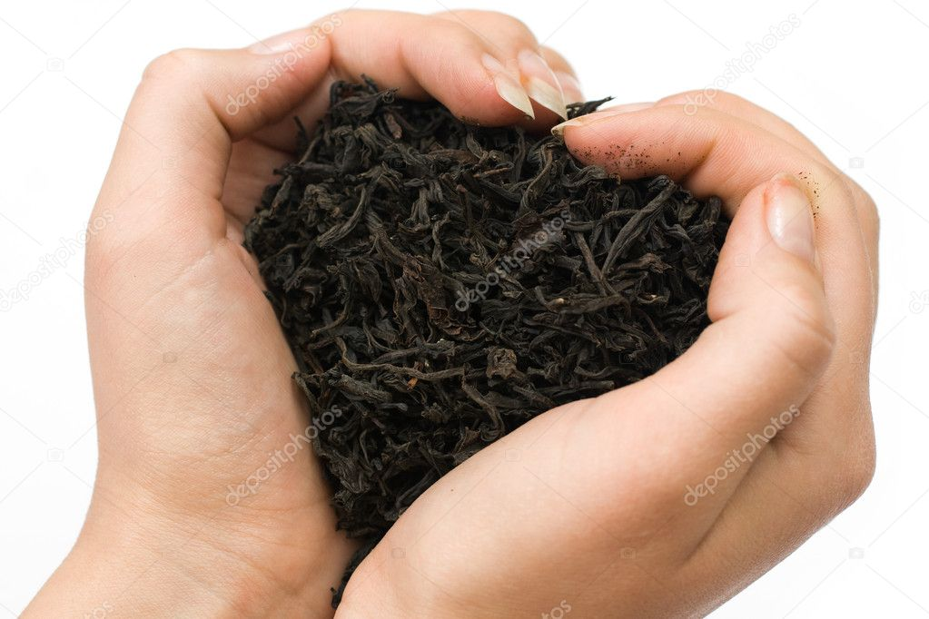 Women hands with a black tea — Stock Photo #1774621
