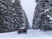 Road During Snowfall — Stock Photo