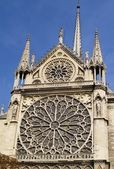 Rosette in Notre Dame, Paris — Stock Photo