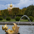 Fish Spout in Peterhof, Russia — Stock Photo