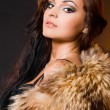 Beautiful fashionable woman with fur - Stock Photo