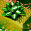 Green gift box and  leaves — Stock Photo