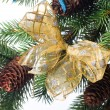 Christmas decoration on a fir-tree — Stock Photo #1406184
