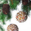 Christmas decoration on a fir-tree — Stock Photo #1406212