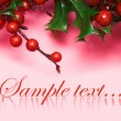 European holly on pink background - Stock Photo