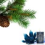 zweig der weihnachtsbaum auf weiß — Stockfoto