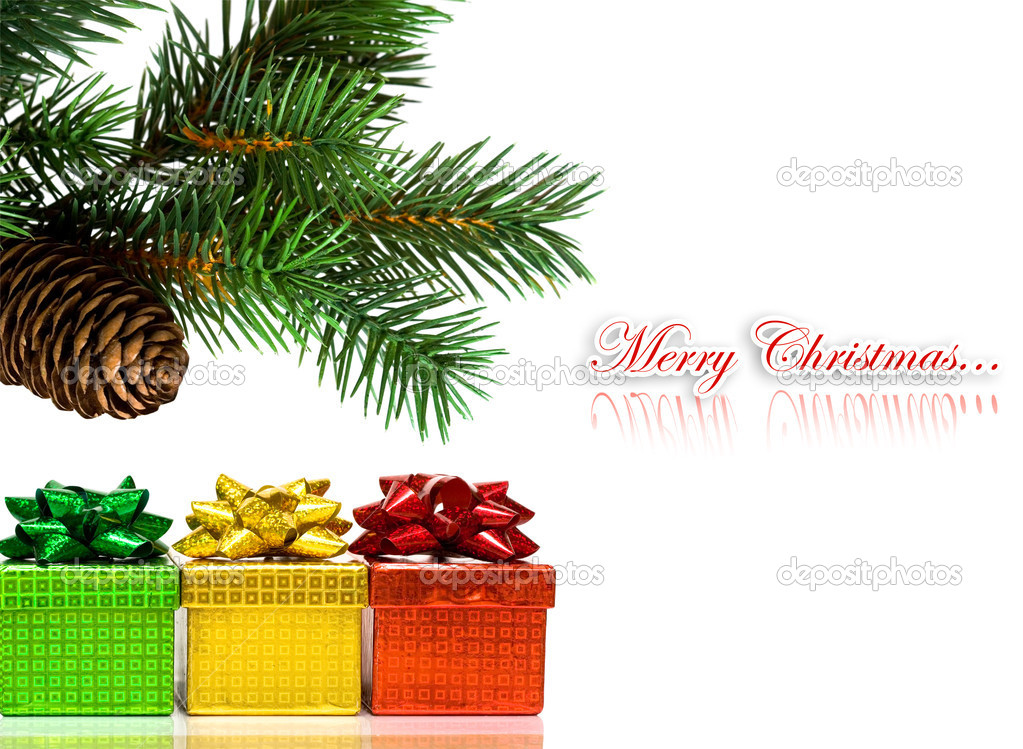 Branch of Christmas tree on white — Stock Photo #1405100