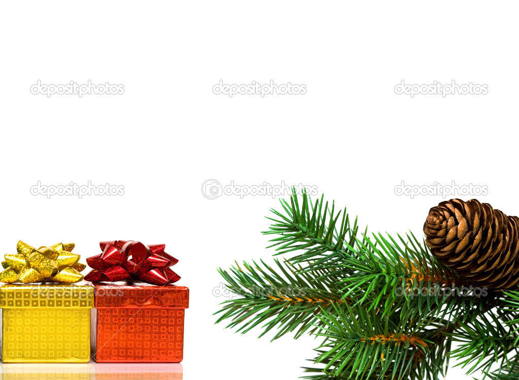 Branch of Christmas tree on white — Stockfoto #1415105