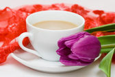 White cup of coffee with violet tulip — Stock Photo