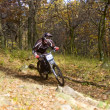 Downhill — Stock Photo #1421685