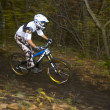 Downhill — Stock Photo #1421756