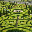 French formal garden — Stock Photo