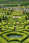 French formal garden — Stock Photo