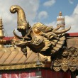 Golden dragon — Stock Photo
