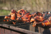 Barbecue. Shashlik (kebab). — Foto Stock