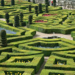 Garden from Chateau de Villandry, France — Stock Photo